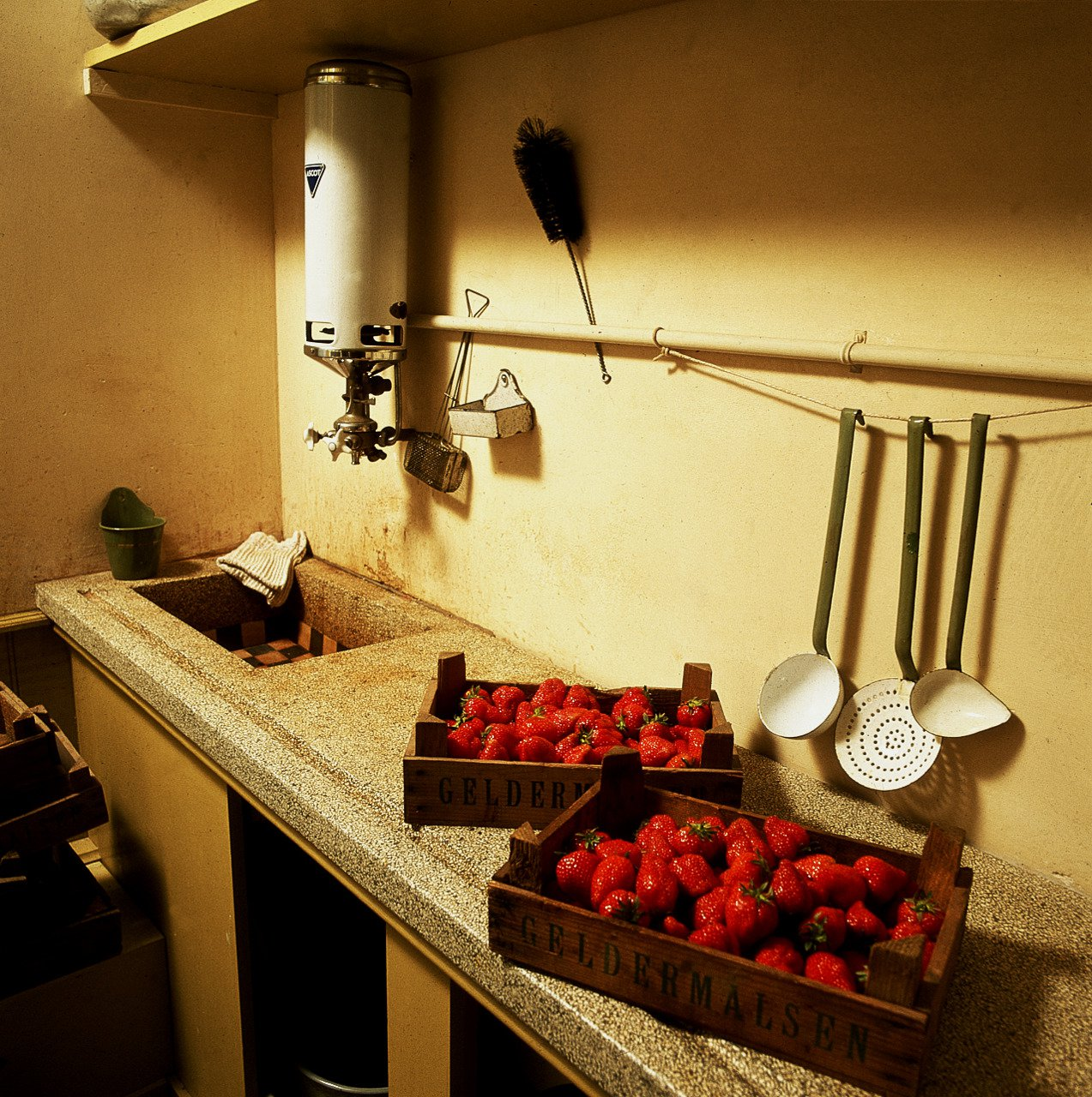 Strawberries on the office kitchen worktop, reconstruction (1999).